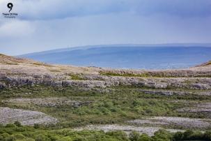 Burren National Park, Co. Clare