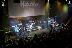 Great White - Rockingham 2017