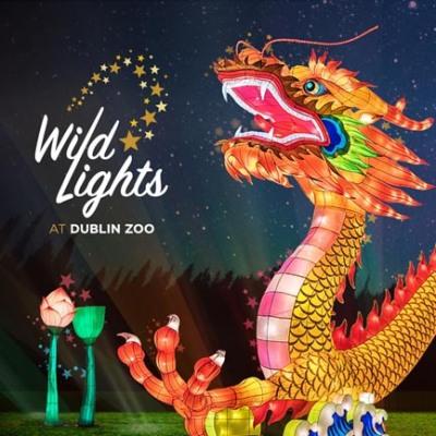 wild-lights-433